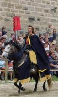 Parade in Carcassonne 5 by chavi-dragon