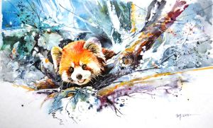 Speed Painting - Red Panda by Abstractmusiq