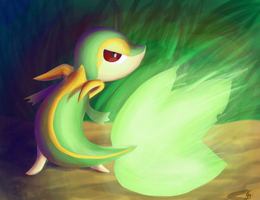 Late night Snivy by Dark-wings-eagle