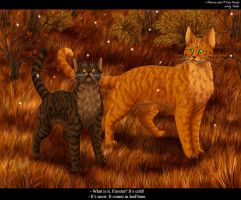 Bramblepaw and Firestar by Vialir