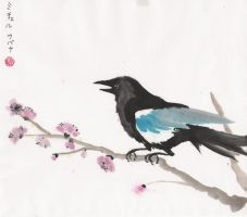 Magpie on plum branch by scarletkitsune
