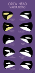 Orca Head Variations by LlamaTHEDragon