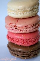 Amonde Macaroons 2 by rockstarwaterheater