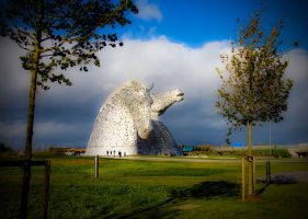 Kelpies by Gallery-North