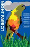Night Parrot Poster by Terrific21