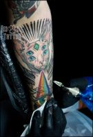 Hairless Cat Tattoo by Reddogtattoo