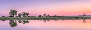 The June mirror by FreeForms