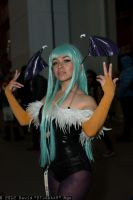 Morrigan NYCC 2012 by miss-gidget