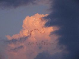 More Clouds by Night-Forager