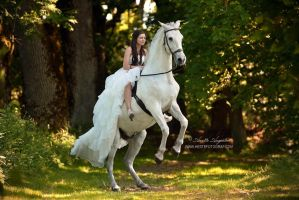 The Bride and The Spaniard by Hestefotograf