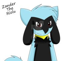 Zander The Riolu 2014 by Sonic201000
