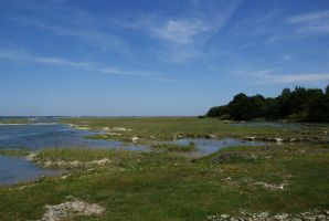 DSC00325 View from Calshot marshes by VIRGOLINEDANCER1