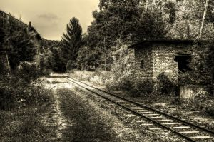forest railway by hans64-kjz