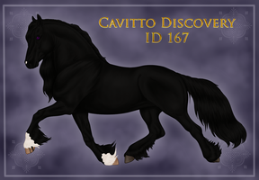 Cavitto Discovery 167 by ThatDenver