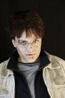 Harry Potter - It all ends by Lari--Chan