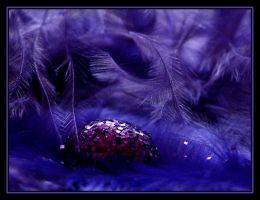 Purple Gem.... by Pjharps