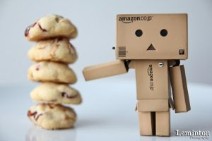 Danbo - Cranberry cookies by Leminton