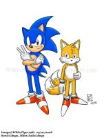 Sonic and Tails by WhiteTiger1987