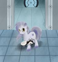 Portal to the end by Srskandy