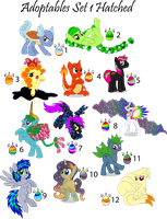 Adopts Set 1 Hatched: All Adopted by benybing