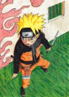 Naruto Mission by sophiafromm1989