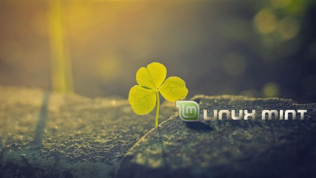 Clover mint 4K by FabioMorales9999