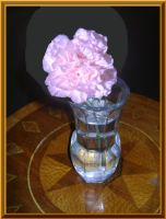 Pink Carnation In A Glass Vase by Aswang301