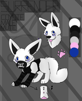 Surrender Reference Sheet by CollectionOfWhiskers