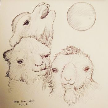 Inktober Day 21 - Three Camel Moon by meihua