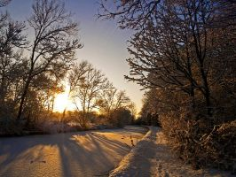 Just a Winter walk 23 by photonig