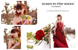 Roses in the snow stockpack 30pc by PumpkinPhotography