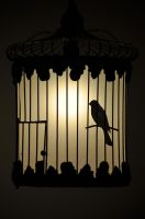 Caged Shadow by IamCo