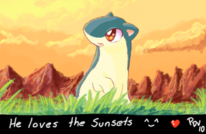 STUFFS .:QUILAVA SUNSET:. by PEQUEDARK-VELVET