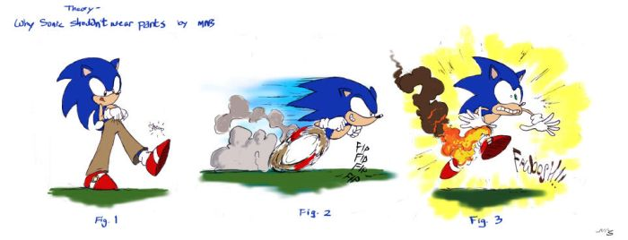Theory- why Sonic shouldn't wear pants by viperxmns