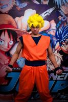 Showing love for VIZ Media...know what I'm saiyan by tousen-kaname