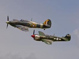 Sea Hurricane and Curtiss P40 by davepphotographer