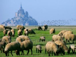 Mont st michel II by alexandrephilippe