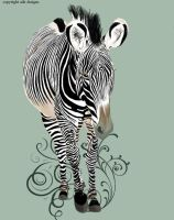zebra by aile-lovely