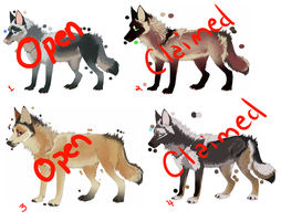 adoptables wolf by Jau-chan