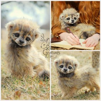 Baby Cheetah by RikerCreatures