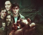 Whatdoesn'tkillyou HP DH2 textreplaced  by MiekeVeke
