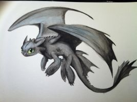 Toothless the Dragon by SwampDragon914