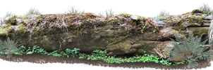 Giant Log PNG.. by AledJonesStockNArt
