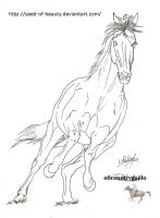 What ive done by EqUiNeArTiStFoReVeR