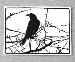 Bird on a Branch Silhouette ACEO ink drawing by OneUrbanTribe