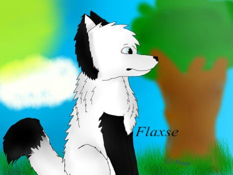 Flaxse by SpencerHP