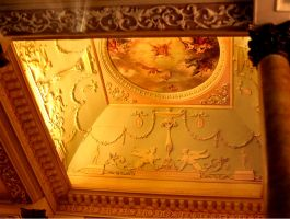 Highly Detailed Designs on the Ceiling by miakyou