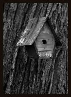 birdhouse by thelastring