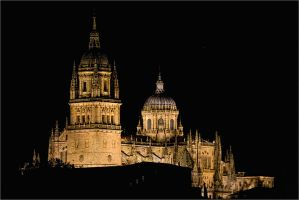 Cathedral of Salamanca by rhipster