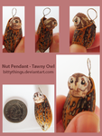 Nut Pendant - Tawny Owl - SOLD by Bittythings